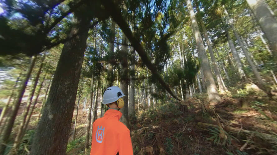 VRで安全に林業研修を「林業安全教育360VR」全国森林組合連合会にて運用開始