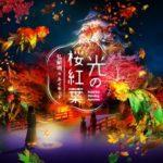 ネイキッドと弘前が初コラボ!重要文化財 弘前城の紅葉ナイトウォーク