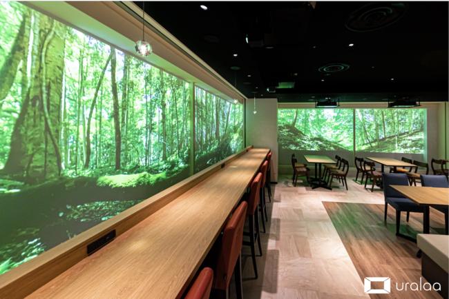コロナ禍でも東京で北海道の大自然に癒される。東京都内初となるデジタル森林浴®️空間「uralaa park haneda」を6/10提供開始