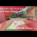 札幌市公認のバーチャル空間で「SAPPOROフラワーカーペット」を10月13日から開催